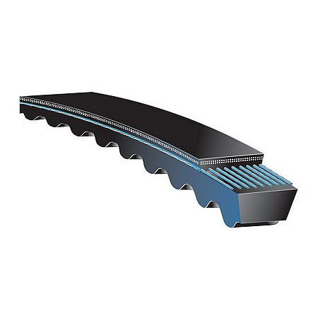 AX30 Size AX Section 5//16 Height 1//2 Width Gates AX30 Tri-Power Belt 32 Outside Circumference